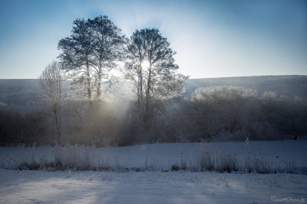 Sunrays on a winter morning